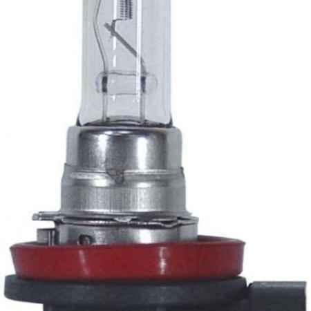 Купить Лампа автомобильная Narva HB3 12V- 65W (P20d) PR50 48085