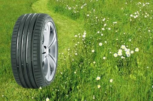 протектор шин для лета